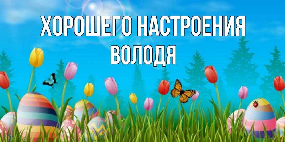 Открытка на каждый день с именем, Володя Хорошего настроения небо и тюльпаны с бабочкой Прикольная открытка с пожеланием онлайн скачать бесплатно