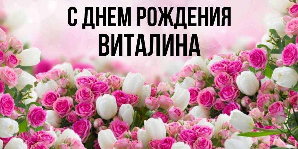 тюльпан поздравления виталина с днем рождения проблем для стен