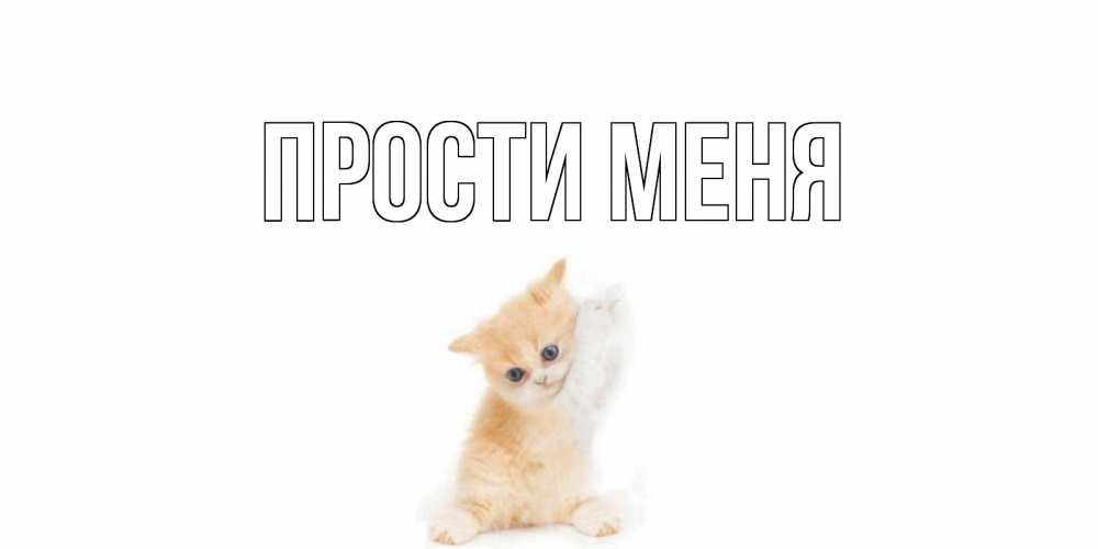 Открытка на каждый день с именем, выберите-имя Прости меня кот Прикольная открытка с пожеланием онлайн скачать бесплатно