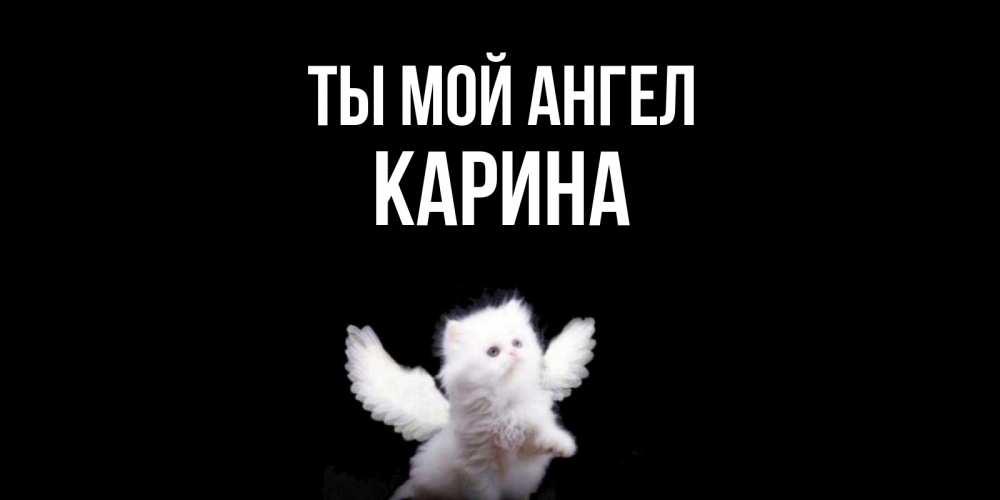 Открытка на каждый день с именем, Карина Ты мой ангел Кот ангел Прикольная открытка с пожеланием онлайн скачать бесплатно
